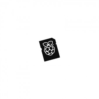 RASPERRY SD y Micro SD 8GB NOOBS para RaspberryPi